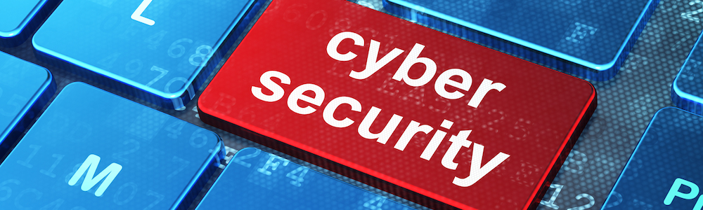 Cybersecurity: Understand What You Seek to Protect